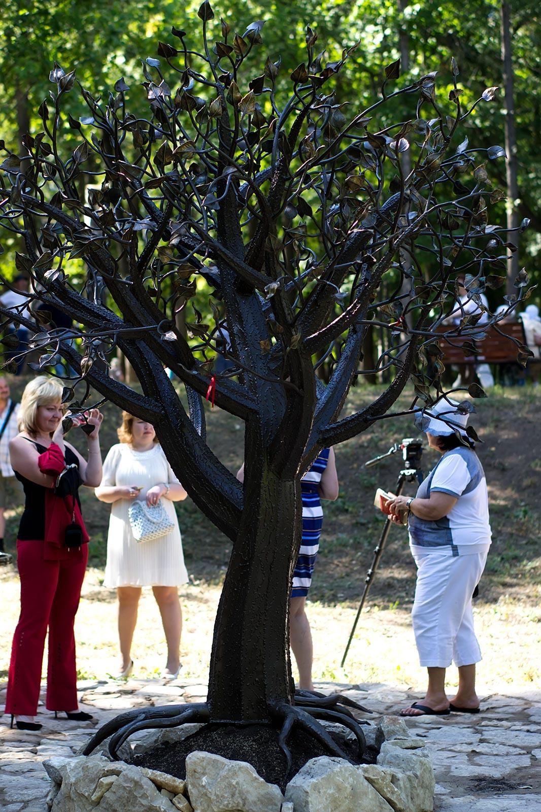 Фото №108775. Дерево потомков. Александровский сад. Елабуга. 3 августа 2012