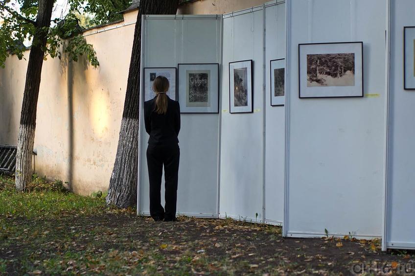 Фото №110179. Art16.ru Photo archive