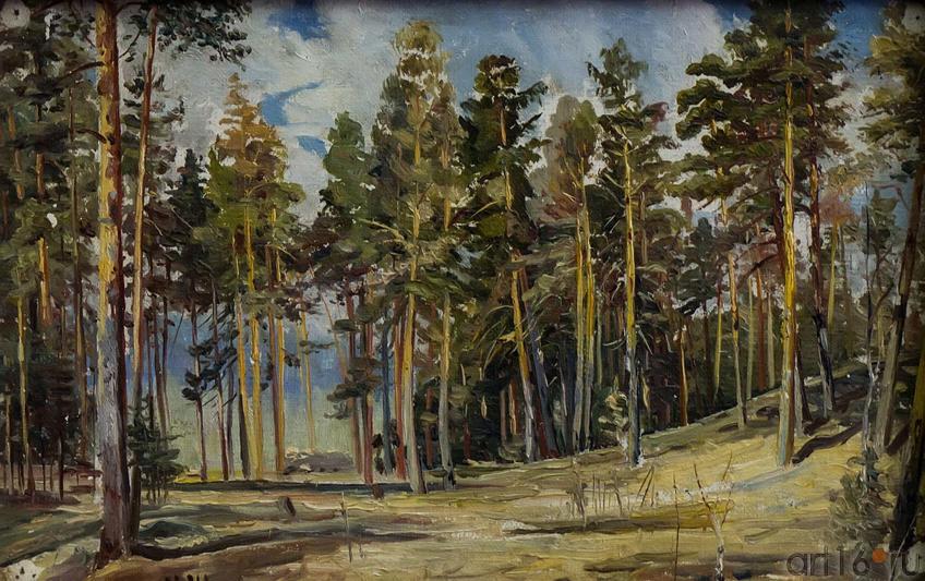 Фото №114716. Сосны. Солнечный день. Этюд 1890. Шишкин И.И (1832-1898)