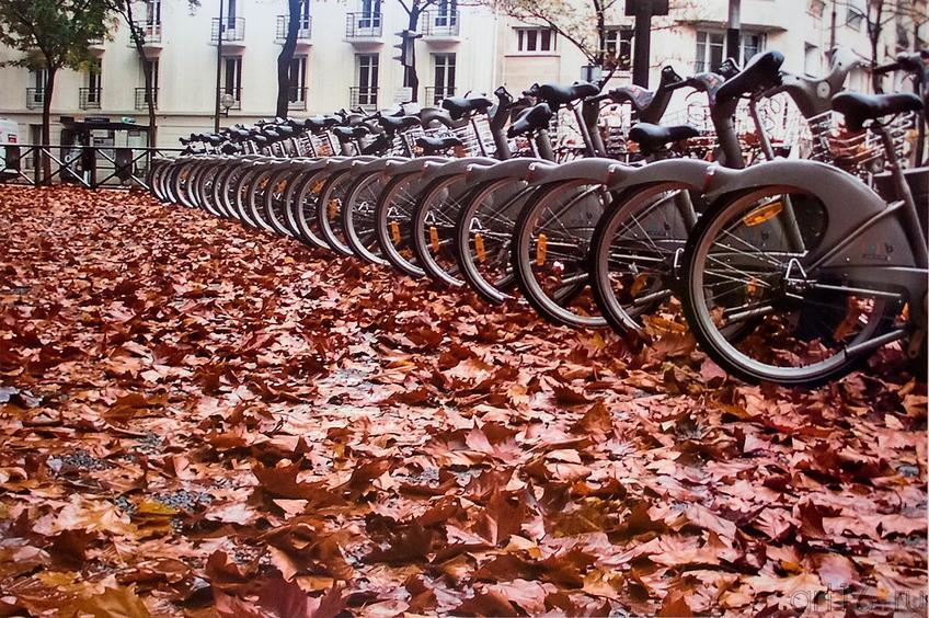 Фото №117205. Париж в лужах Фотовыставка. Автор Мария Яновская
