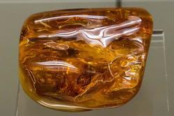 Слоистый янтарь с инклюзом. Возраст: палеоген