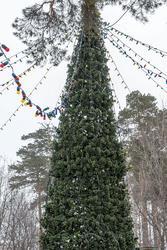 Чистополь, новогодняя ёлка