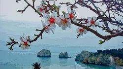 Весна в Крыму. Живописный Рендеринг в стиле Поп-Арт (Дм. и О.Пастернак)