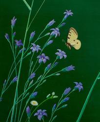 Цветы и бабочки. 2001. Рушан Шамсутдинов