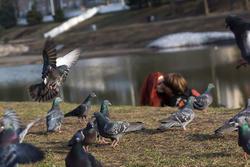 Весна в парке «Чёрное озеро»