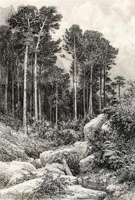 КРЫМСКИЙ ВИД (АЙ-ПЕТРИ). Оттиск 1885 года.::Выставка «Искусство крымских татар»