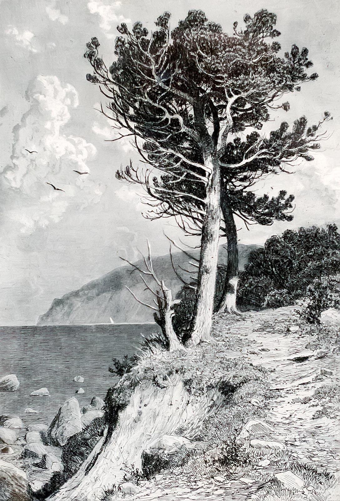 Фото №179065. ШИШКИН ИВАН ИВАНОВИЧ. 1832- 1898 АЮДАГ. 1892