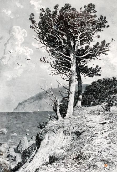 ШИШКИН ИВАН ИВАНОВИЧ. 1832- 1898 АЮДАГ. 1892::Выставка «Искусство крымских татар»