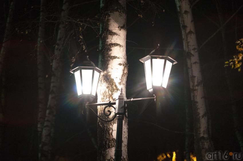 фонарь возле здания БКЗ::Фото для статей
