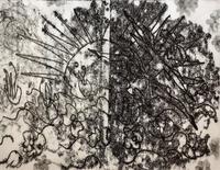 ЛАДА АЮДАГ (АЮПОВА ЛАДА ВАЛЕРЬЕВНА) 1963 Россия, Татарстан, Казань ПРОБУЖДЕНИЕ. МОИ ПОЛЕТЫ ВО СНЕ. 2013 Бумага, монотипия, типог