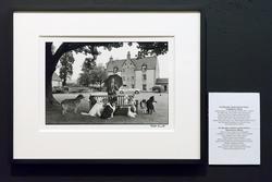 Фото Эллиотта Эрвитта. Чарльз Спенс в поместье The Macallan с собаками 12 шотландских пород