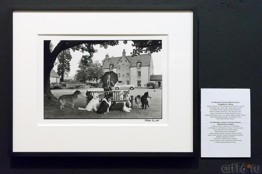 Фото №224545. Фото Эллиотта Эрвитта. Чарльз Спенс в поместье The Macallan с собаками 12 шотландских пород