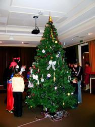 Новогодняя Ёлка в музее Природы - 2008/2009