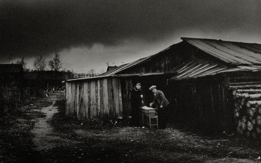 Фото №272474. В.Зотов. ОСЕНЬ. Зеленодольск. 1983