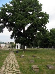 Кладбище, где захоронена кавалерист-девица Александров (Дурова)