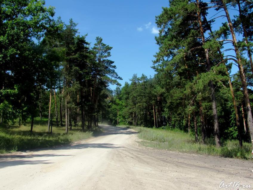 Фото №32361. Дорога с пристани в Булгар