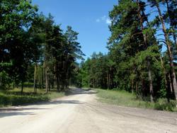 Дорога с пристани в Булгар