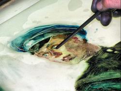 Подготовка к смещению красочного слоя