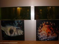 Встроенные в стену аквариумы и художественное оформление
