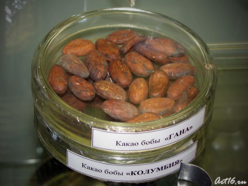 Фото №39405. Какао бобы «Гана», какао бобы «Колумбия»