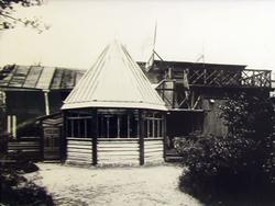 Зимняя веранда. 1904