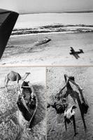 1989 г. На дне Аральского моря