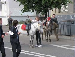 Лошадки меняют место дислокации