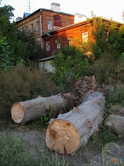 Казань, 2010. Где-то в р-не  ул. Некрасова::Избратое