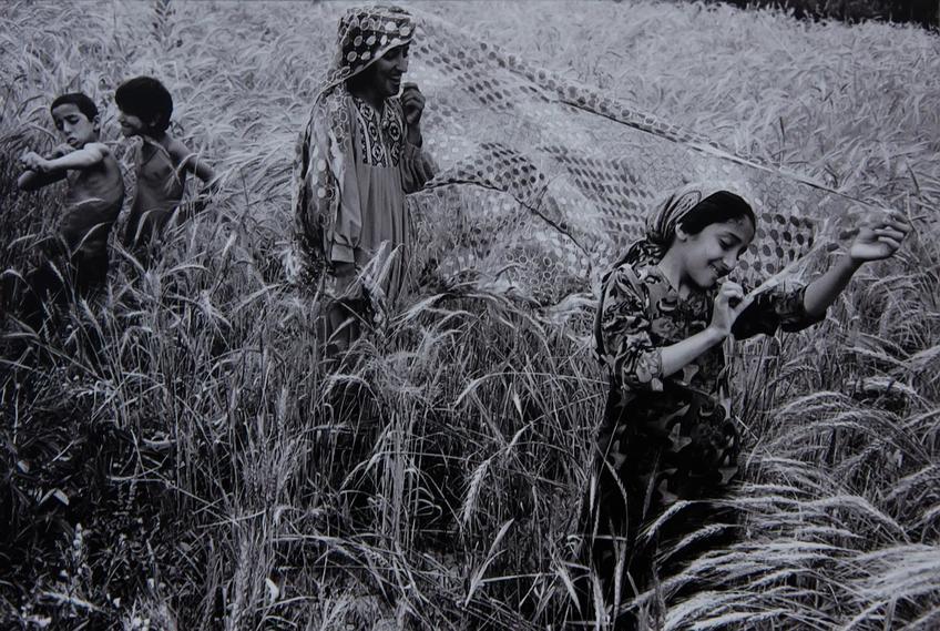 Фото №63146. Узбекистан 1990-1998