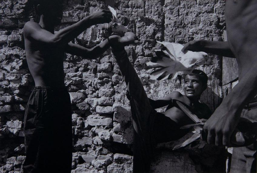 Фото №63176. Цыгане. Узбекистан 1992-1998