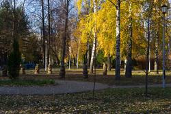 Осень. Гномы. 2010г.