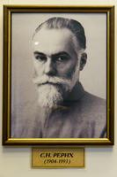 Святослав Николаевич Рерих (1904-1993). Портрет