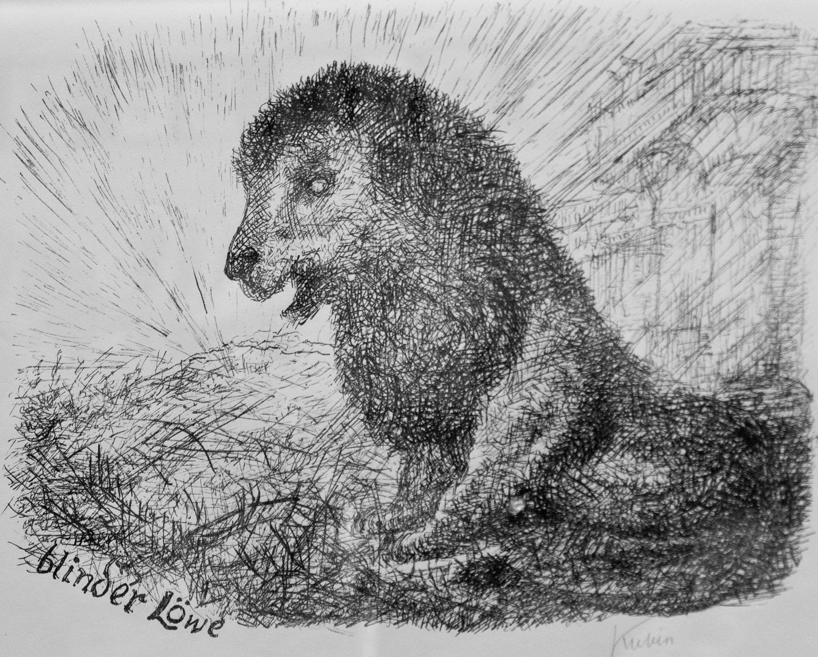Фото №76647. Слепой лев. 1955. Альфред Кубин (1877-1959)