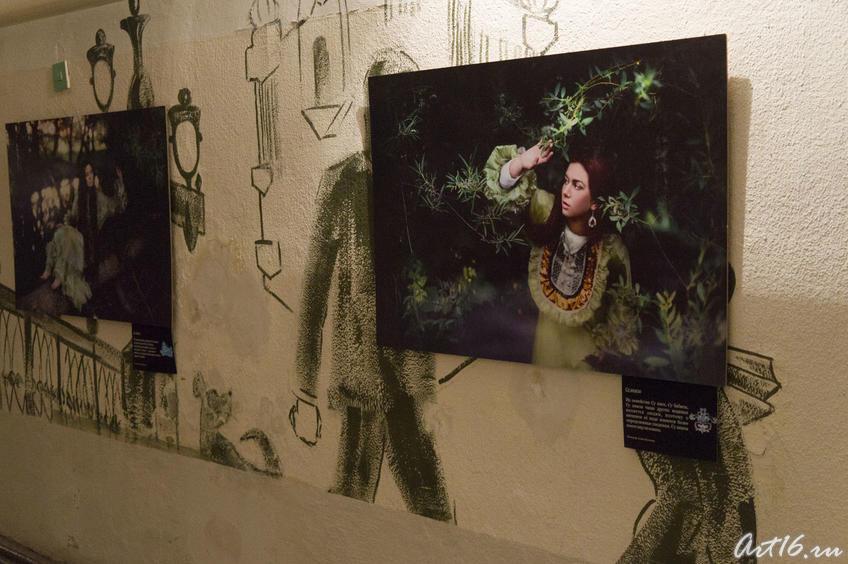 Фотовыставка. Фрагмент экспозиции