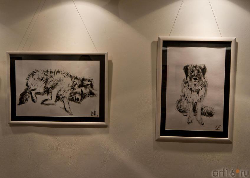 Собаки.  Рина Бланк