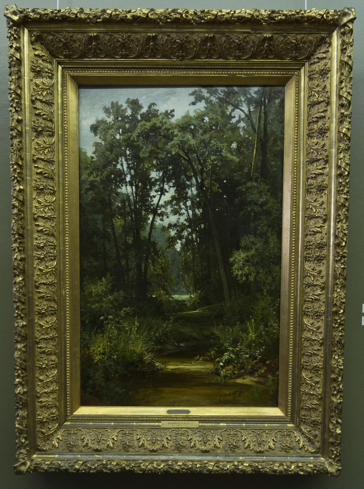 Фото №80083. В лесу. 1880 (?). Шишкин И.И. (1832-1898)