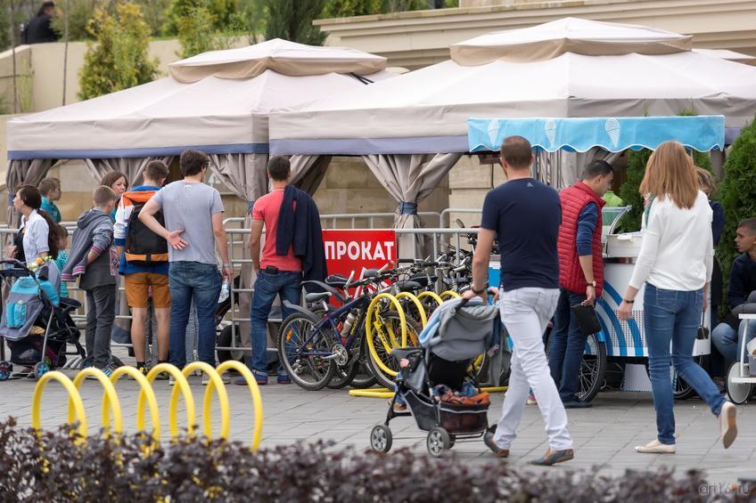 Фото №850150. Art16.ru Photo archive