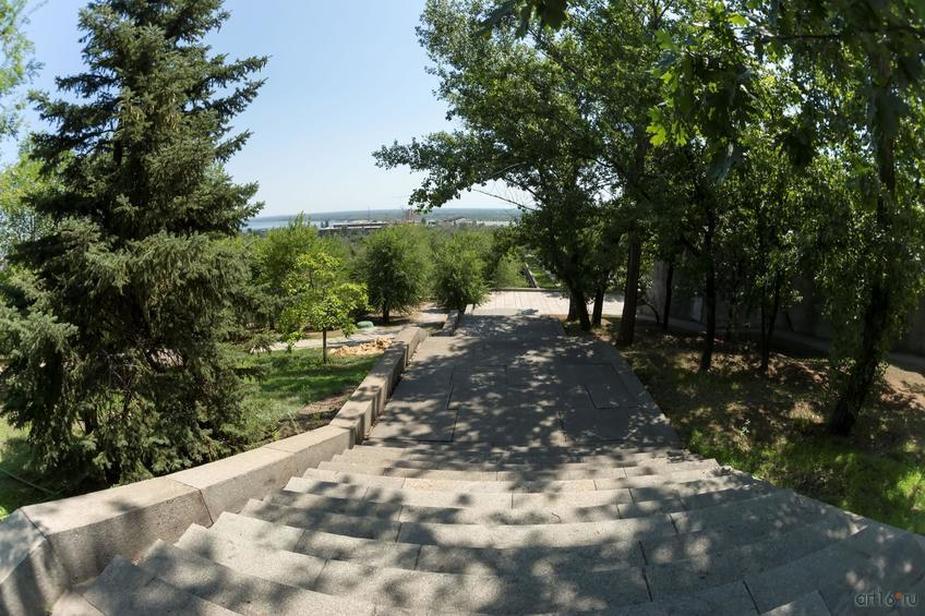 Фото №858433. Мемориальный дендропарк у подножия Мамаева кургана