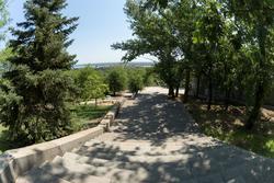Мемориальный дендропарк у подножия Мамаева кургана