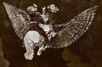 Летящая глупость.Ок. 1815-1824. Франсиско Гойя, Фуэндетодос 1746 - Бордо. 1828;