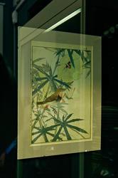 Имао Кейнен. Лист из альбома ''Птицы и цветы''