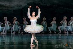 Майя Махатели (Национальный балет Нидерландов)