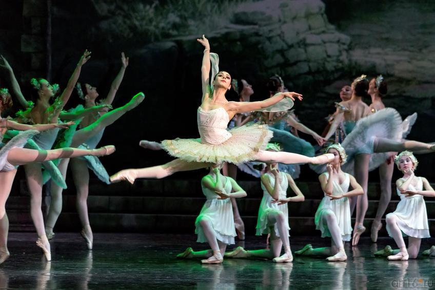 Фото №886357. Майя Махатели (Национальный балет Нидерландов)