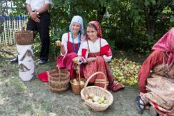 Яблочный спас в Красновидово. 2016