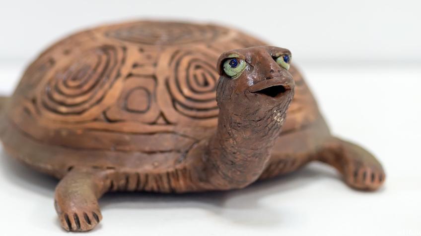 Фото №894954. Черепаха. Нина Кузьминых, 1956