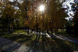 Сад Эрмитаж, осень