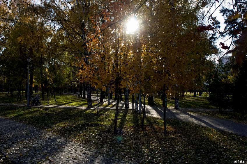 Сад Эрмитаж, осень::Зарисовки. Природа