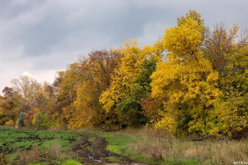 Фото №897813. Осень