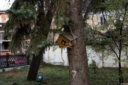 Кормцшка в музейном саду. Дом-музей Ленина, Казань, ул. Ульянова-Ленина, 58