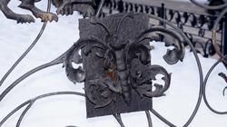Бабочка на решетке. Фрагмент городского дизайна. Пермь, январь 2012